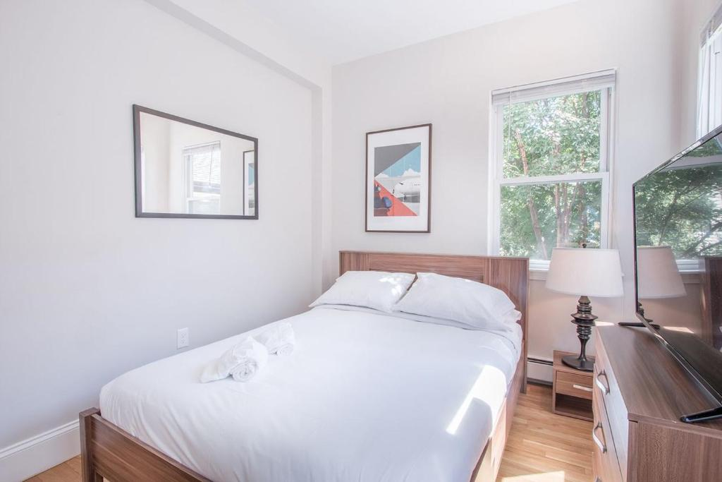 three bedroom apartment on memorial cambridge ma