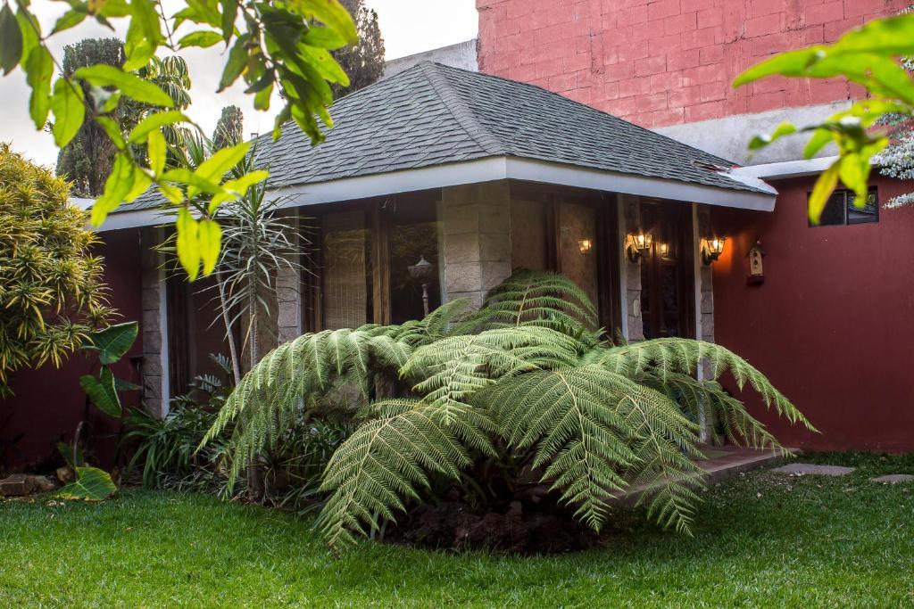 Mi casa tu casa santa catarina pinula online booking for Mi casa es tu casa online