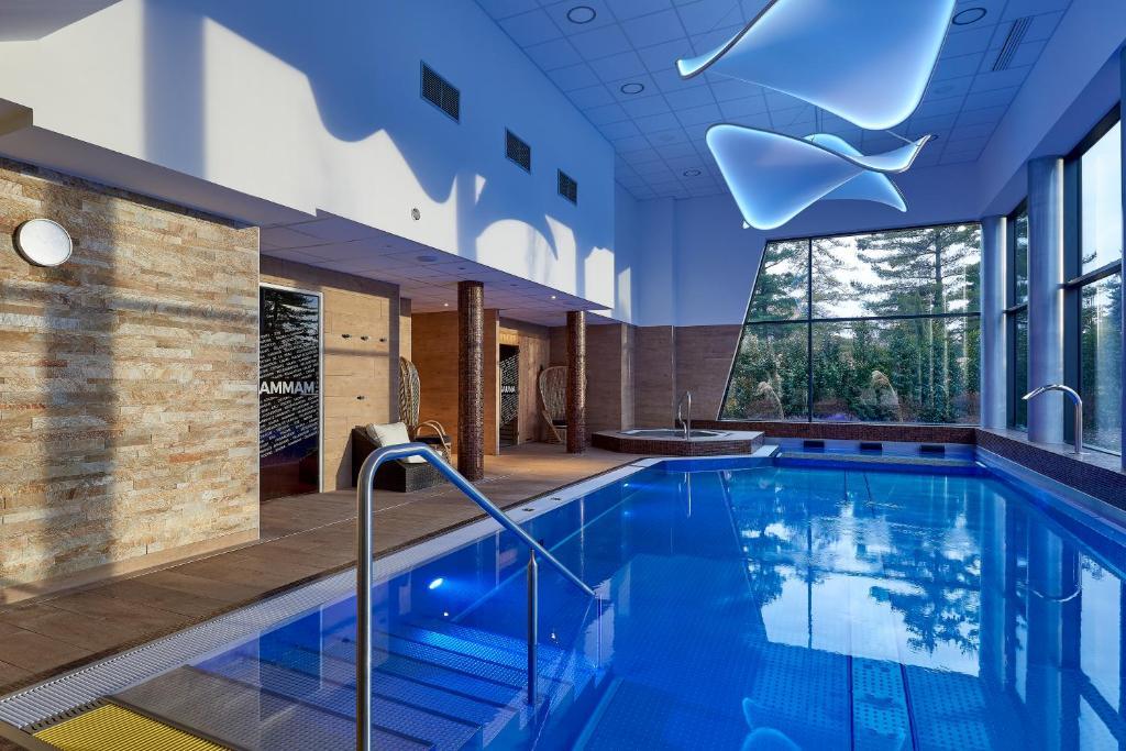 בריכת השחייה שנמצאת ב-Brit Airport Club Hotel - Basel Mulhouse או באזור