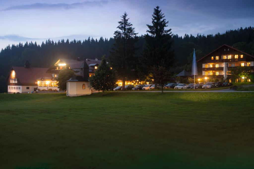Hotels Naehe Bodenmais Wellness
