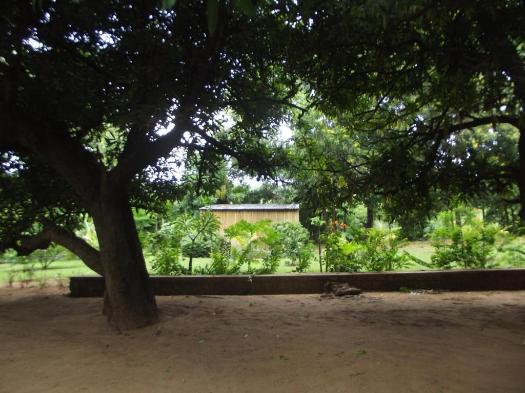 Le manguier ramena antsiranana reserva tu hotel con for O jardin ideal route de montauban bessieres