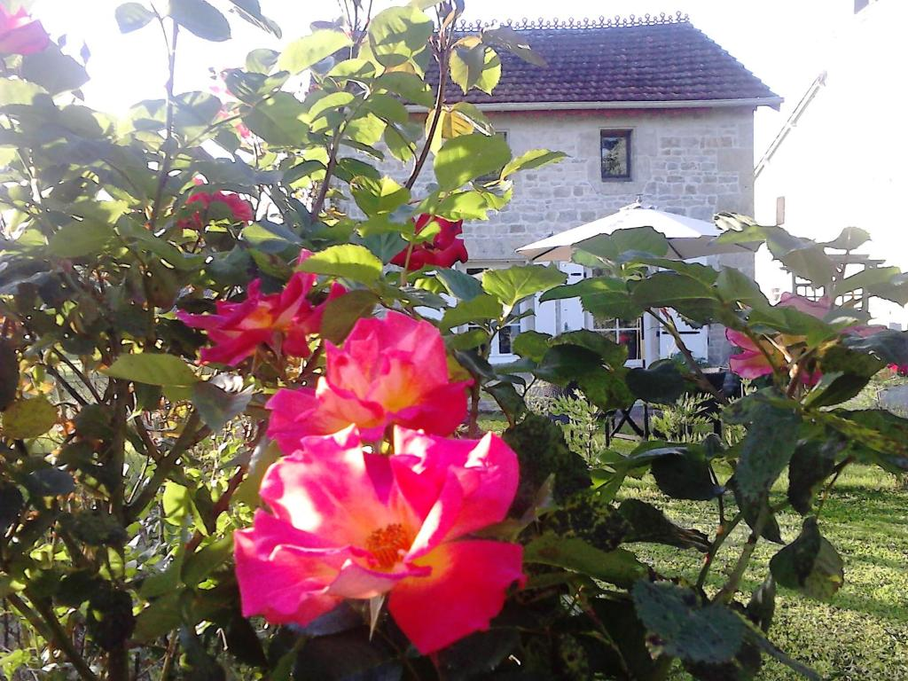 vacation home les roses tr mi res saint andr de rosans france. Black Bedroom Furniture Sets. Home Design Ideas