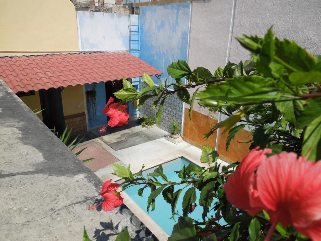 Spanglish Hostel