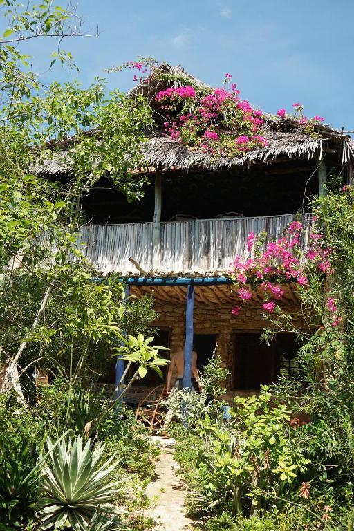 Blue Monkey Beach Cottages
