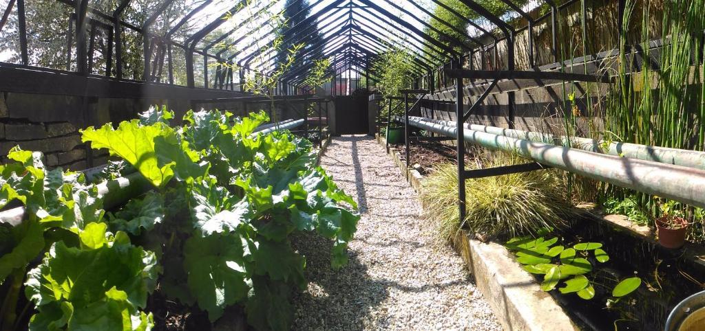 Le jardin des erables vernon informationen und - Le jardin d erables ...
