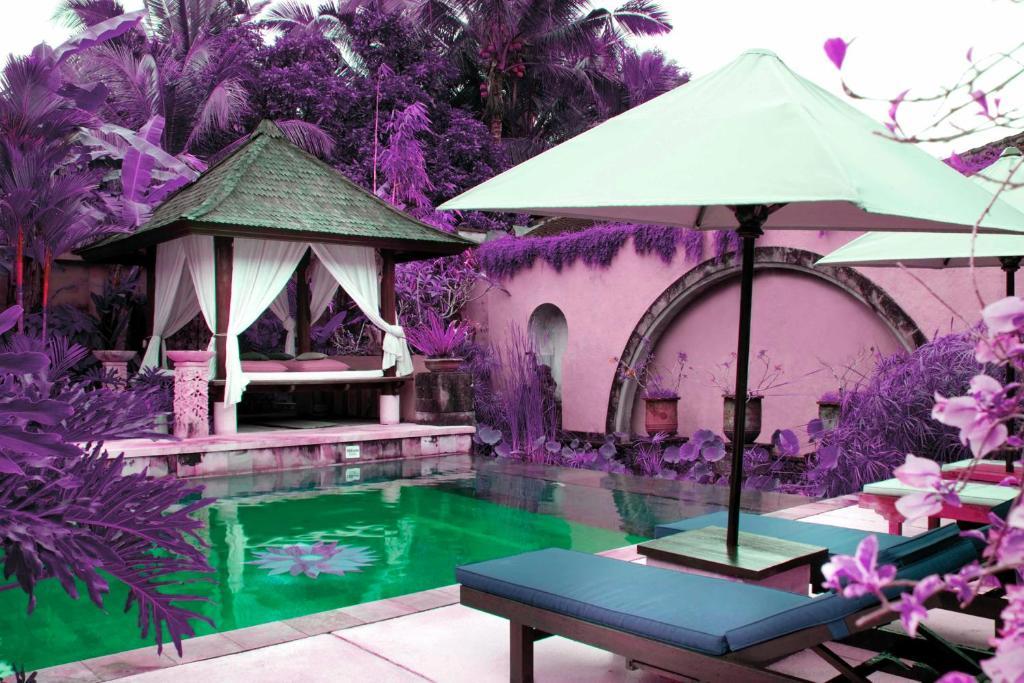 Review Of Bebek Tepi Sawah Restaurant And Villas In Bali Bali Hotel Books