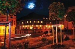 Hotel Zelený Strom, Palackého nám. 21, 26801, Hořovice