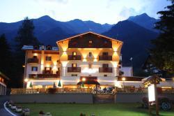 Hotel Alpino Family Wellness Hotel, Viale delle Acque Acidule 32, 38024, Antica Fonte di Peio