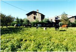 Casa Rural La Vall del Cadi, Carretera Cerc, Casa Rural La Vall del Cadi, 25700, La Seu dUrgell