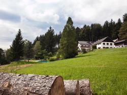 Gasthof Waldschenke, Amesberg 11, 4190, Bad Leonfelden