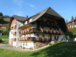 Haus Elisabeth, Ortsstr. 20, 79695, Wieden