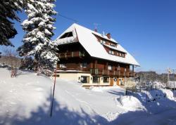 Hotel Bartlehof, Dorfstr. 16, 79859, Schluchsee
