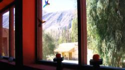 Casa Colores, Calle radio estacion s/n Frente viaja estacion de tren, 4622, Tilcara