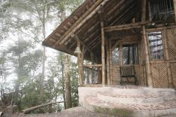 Bellavista Cloud Forest Lodge, Jorge Washington E7-23 y 6 de Diciembre, EC170150, Tandayapa
