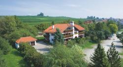 Hotel Alpina, Höhenweg 10, 88709, Hagnau
