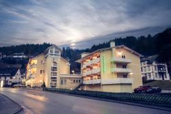 Hotel Restaurant Tannenhof, Schramberger Str. 61/63, 78730, Lauterbach