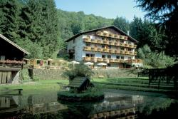 Wolffhotel, Birresbornerstr. 8, 54574, Kopp
