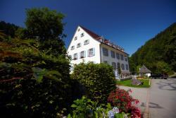 Hotel Hofgut Sternen - Wohnen in Kunst und Kultur, Höllsteig 77, 79874, Breitnau