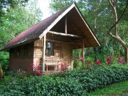 Arenal Oasis Eco Lodge & Wildlife Refuge, La Fortuna, San Carlos, 21007, Fortuna