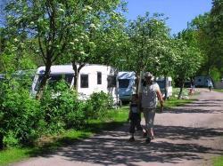 Nivå Camping & Cottages, Sølyst Alle 14, 2990, Nivå