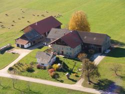 Baby- und Kinderhof Aicherbauer, Talacker 3, 5164, Зехам