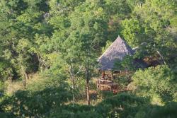 Sable Mountain Lodge, Selous Game Reserve,, Kisaki