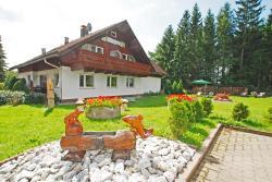 Gästehaus Tannenhof, An der Ziegelhütte 2, 38678, Clausthal-Zellerfeld