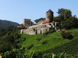 Burg Deutschlandsberg, Burgplatz 1, 8530, ドイチュランツベルク