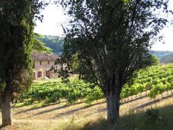 Domaine de Saint Ferreol - Gîtes, RD560, 83670, Pontevès