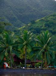 Tauhanihani Village Lodge La Vague Bleue, Tahiti Teahupoo pk16 cote mer, 98719, Teahupoo