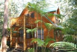 Springbrook Mountain Chalets, 2058 Springbrook Road Springbrook, 4213, Springbrook