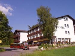 Hotel Igel, Baumgarten 8, 92715, Püchersreuth