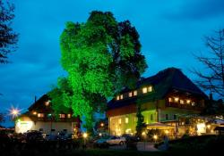 Hotel Zollner, Finkensteinerstraße 14, 9585, Gödersdorf