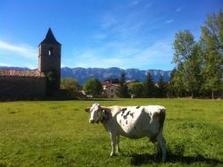 Casa Rural Cal Rei, Travessera, 16, 25726, Lles