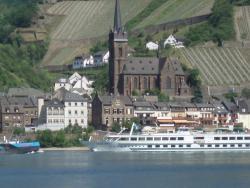 Weingut Nies, Rheinallee 7-8, 65391, Lorchhausen