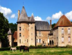 Château du Max, Le Max, 03240, Le Theil