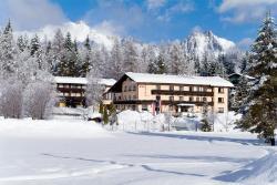 Hotel Alpina, Geigenbühelstraße 125, 6100, Seefeld in Tirol
