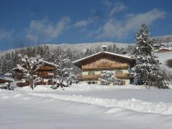 Hotel Garni Wieshof, Weinberg 56, 6365, Kirchberg in Tirol