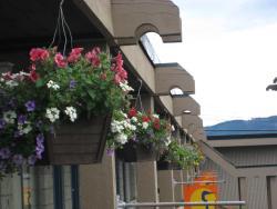 Thunderbird Motor Inn, 5849 York Road, V9L 3S3, Duncan