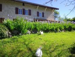Chambre d'hôtes La Haie Fleurie, 170 Chemin La Haie Fleurie, 01430, Chevillard