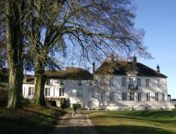 Le Chateau de Prauthoy, 22 grand' rue, 52190, Prauthoy