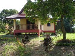 Suancha Tea Garden, 104 Ban Mai Pattana, T. Pasang, Chiang Rai, 57110, 湄善