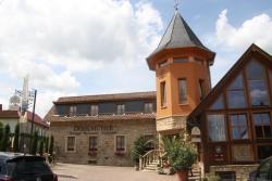 Dohlmühle Restaurant und Gästehaus, An der Dohlmühle 1, 55237, Flonheim