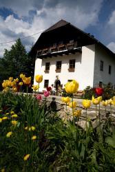 Ferienhof Rotbuchner, Gaisriegl 11, 4574, Vorderstoder