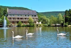 Hotel Du Lac, 244 Rue De La Republique, 68500, Guebwiller