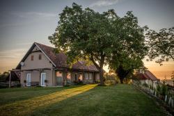 Winzarei, Weingut Tement, Zieregg 4-5, 8461, Berghausen