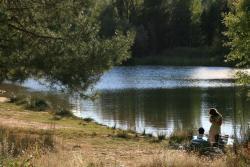 El Llano de los Conejos, Carretera CM-210 Km 30, 16890, Cañamares