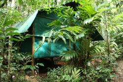 Daintree Crocodylus Village, Lot 5 Buchanan Creek Road, Cow Bay, 4873, Cow Bay