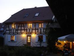 Chat au Grumbach, 11 rue de Durlinsdorf, 68580, Mooslargue
