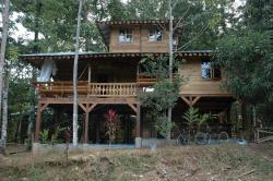 Casa de la Trepada, Camino Paraiso, Punta Uva , 70403, Cocles